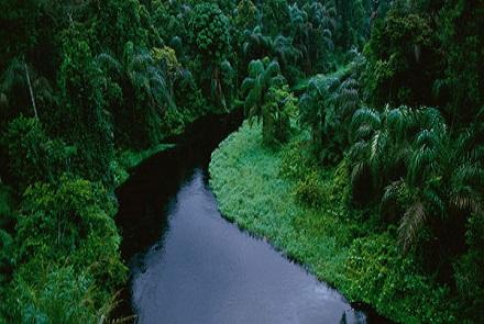 Cine dorește să viziteze Congo? Acest administrator de rețea a plecat deja