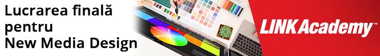 Cursul Lucrarea finală pentru New Media Design