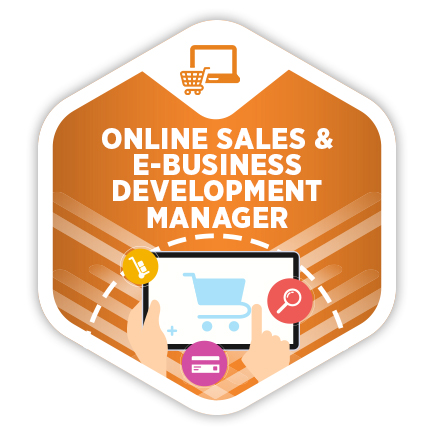 Online Sales & E-business Development