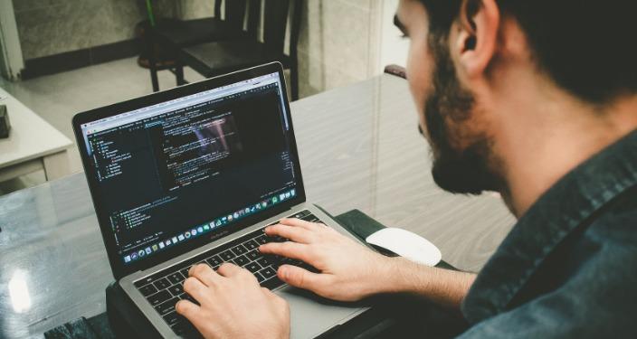 câștigurile pe Internet pentru programatorii începători)